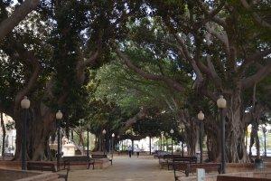 Alicante2_20150303