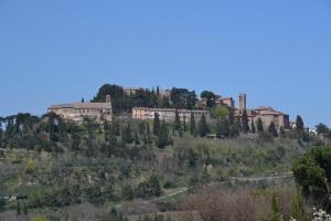 Montapulcino1_20150413
